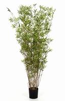 Kunstplant Bamboe oriental toef 130 cm