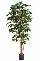 Kunstplant Coffea arabica 120 cm