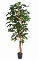 Kunstplant Coffea arabica 150 cm