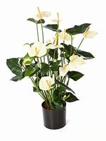 Kunstplant Anthurium de luxe wit