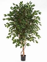 Kunstplant Ficus exotica de luxe 210 cm