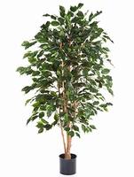 Kunstplant Ficus exotica 120 cm