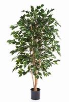 Kunstplant Ficus exotica 180 cm