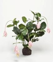 Kunstplant Medinilla roze