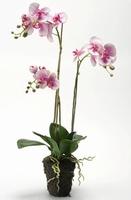 Kunstplant Phalaenopsis fuchsia
