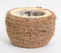 Plantenschaal Cocos rond